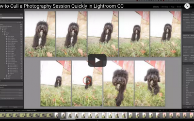 Speed up your Lightroom Culling Process