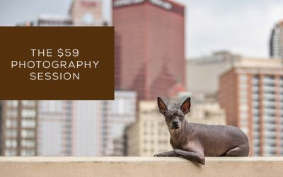 The $59 Photography Session