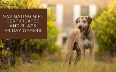 Navigating gift certificates and Black Friday offers