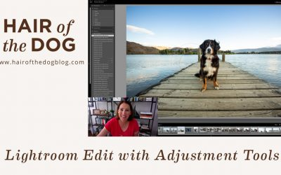 Using the Lightroom Adjustment Tools