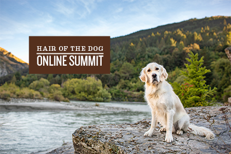 hair-of-the-dog-online-summit-2