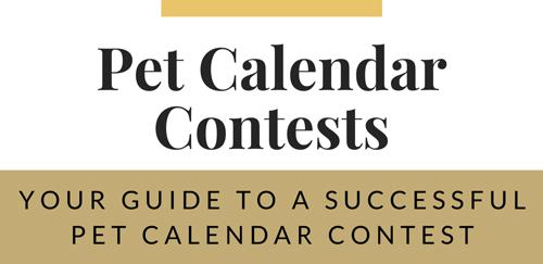pet photography calendar contest course